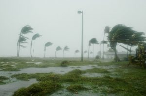Hurricane Dennis in Key West - contact us and ensure that you are protected.