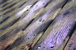 Wet and damages wood - the common results of water damage