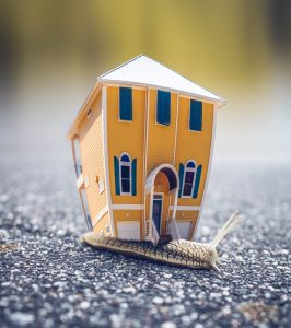 A snail carrying a small yellow house on its back