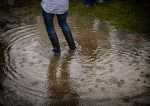 Prepare for flooding by buying protective equipment