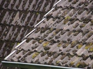 A dirty roof with moldy black roof tiles.