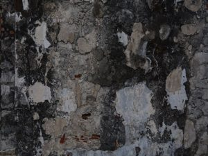 A wall covered in black mold.