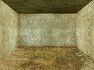 An empty room with walls and the ceiling covered in mold.
