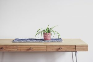 plant on tablecloth on wooden table