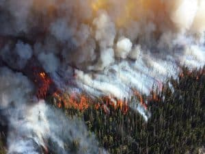 An aerial image of a wildfire burning through a forest.